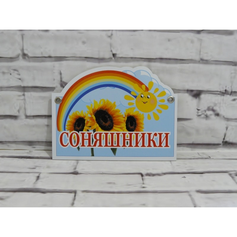 Табличка для группы из пластика 31х21 см