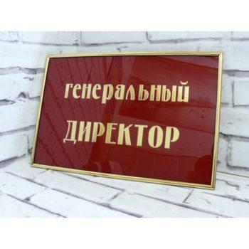 Табличка на дверь из акрила с молдингом 30х20 см (код 90205)